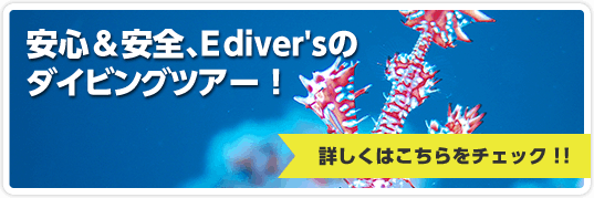 安心&安全、E diver'sのダイビングツアー!詳しくはこちらをチェック!!