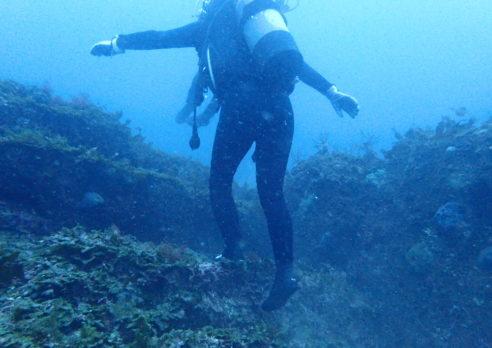 神々の眠る海へ行ってきました!!遺跡ダイビング。
