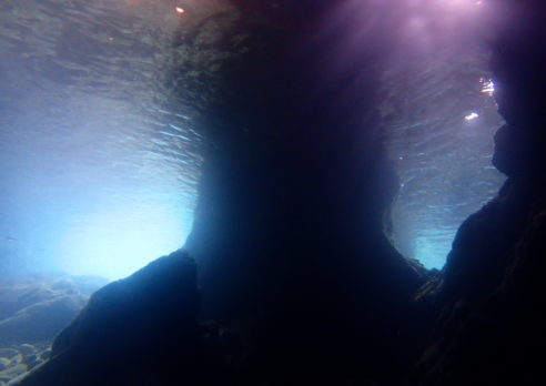 夏の田後 菜種島で洞窟ダイビング♪